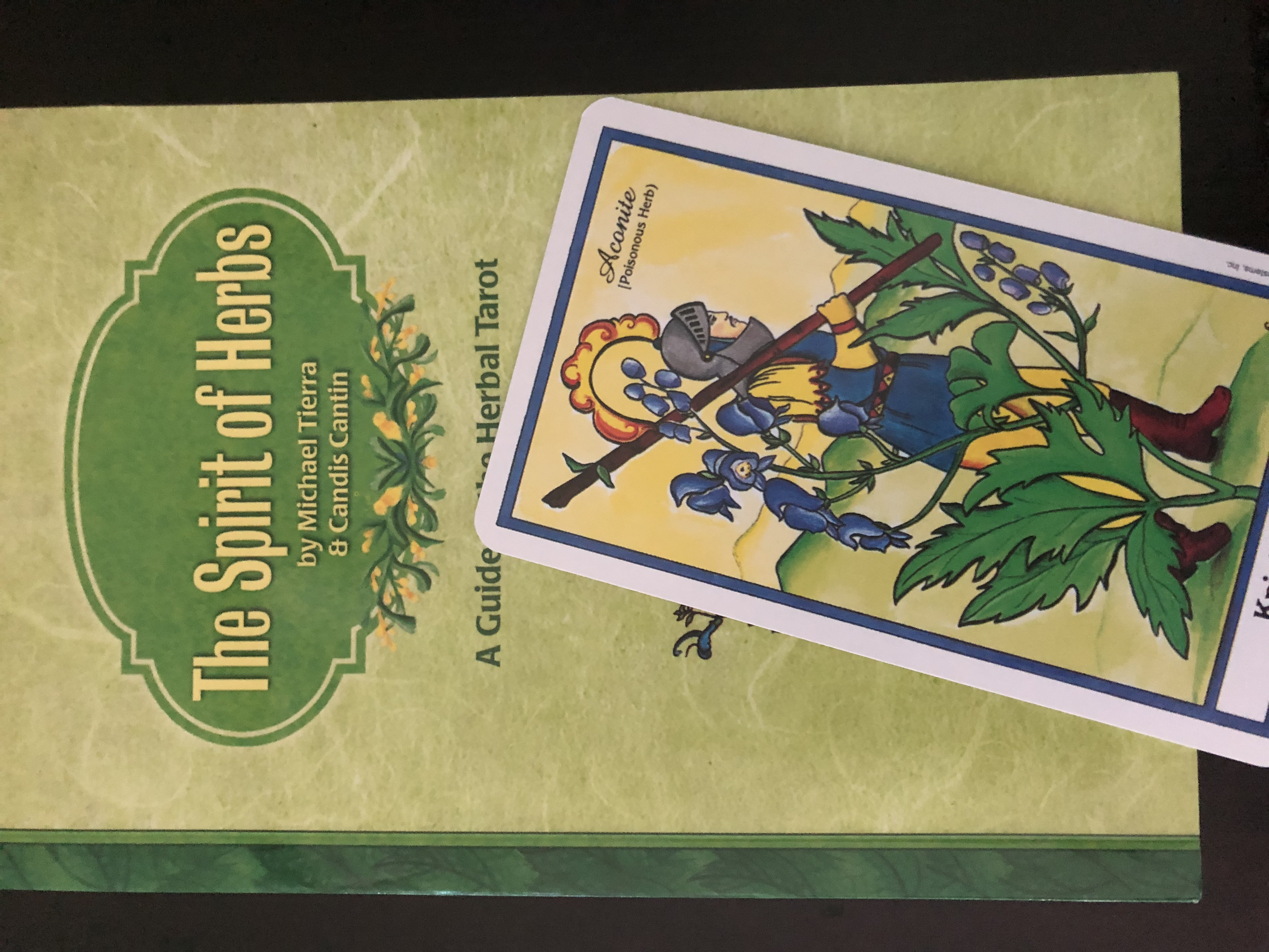 Herbal-tarot-book-by-tierra-and-cantin-with-knight-of-wands-card-with-monkshood-illustration
