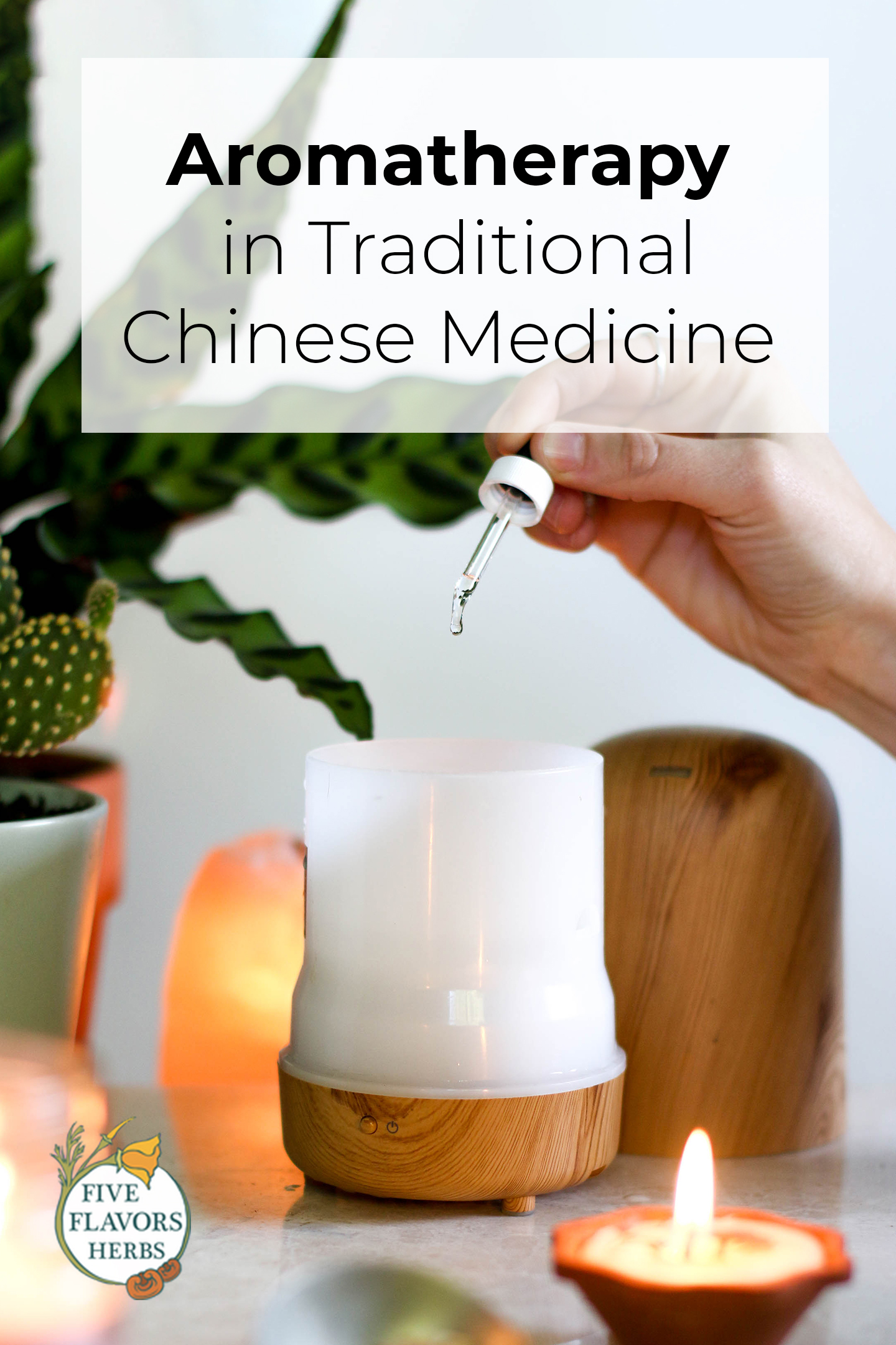 aromatherapy-in-traditional-chinese-medicine-pin-from-five-flavors-herbs