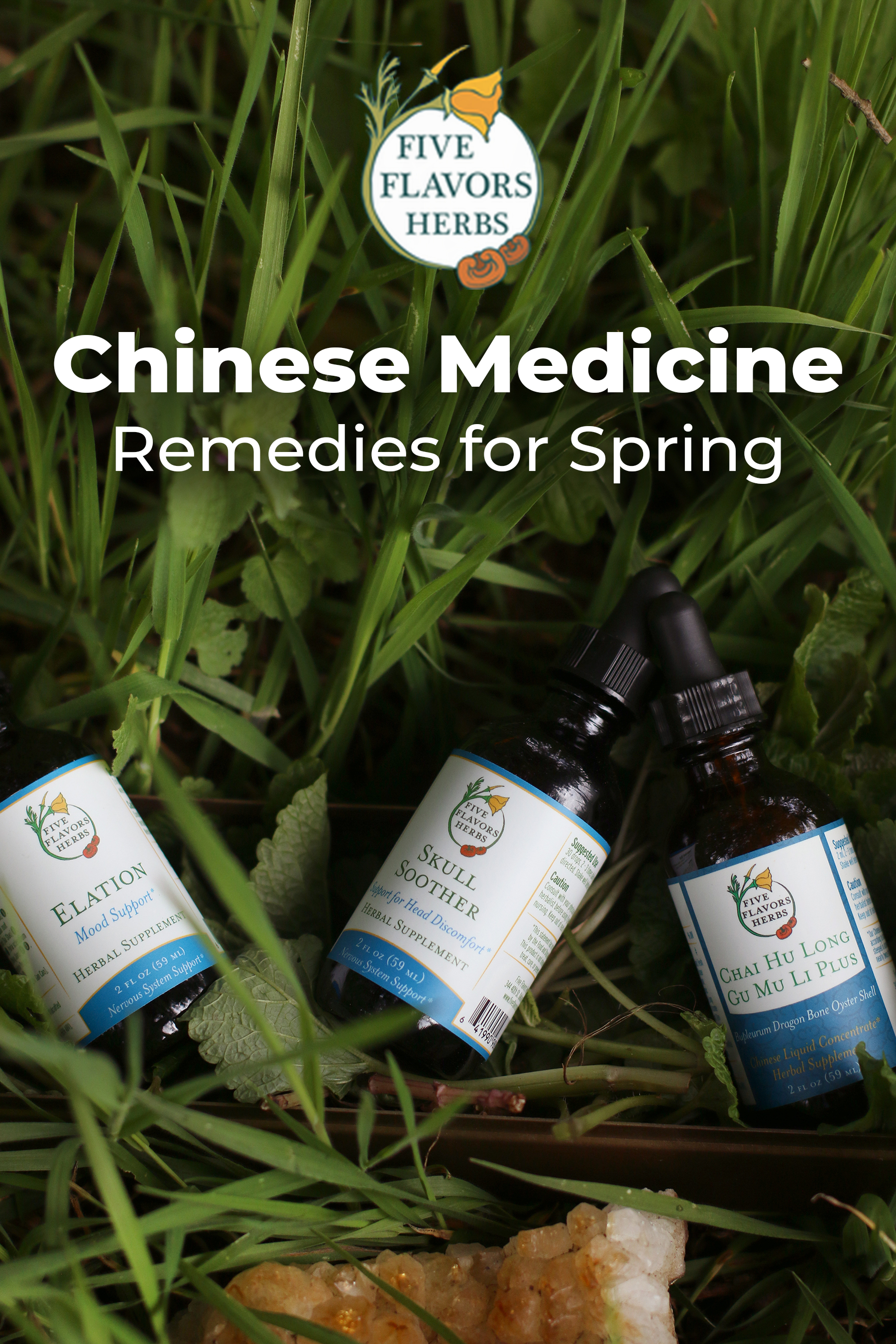 chinese-medicine-remedies-for-spring-pin-with-three-tincture-bottles-in-bed-of-fresh-green-grass-and-leaves