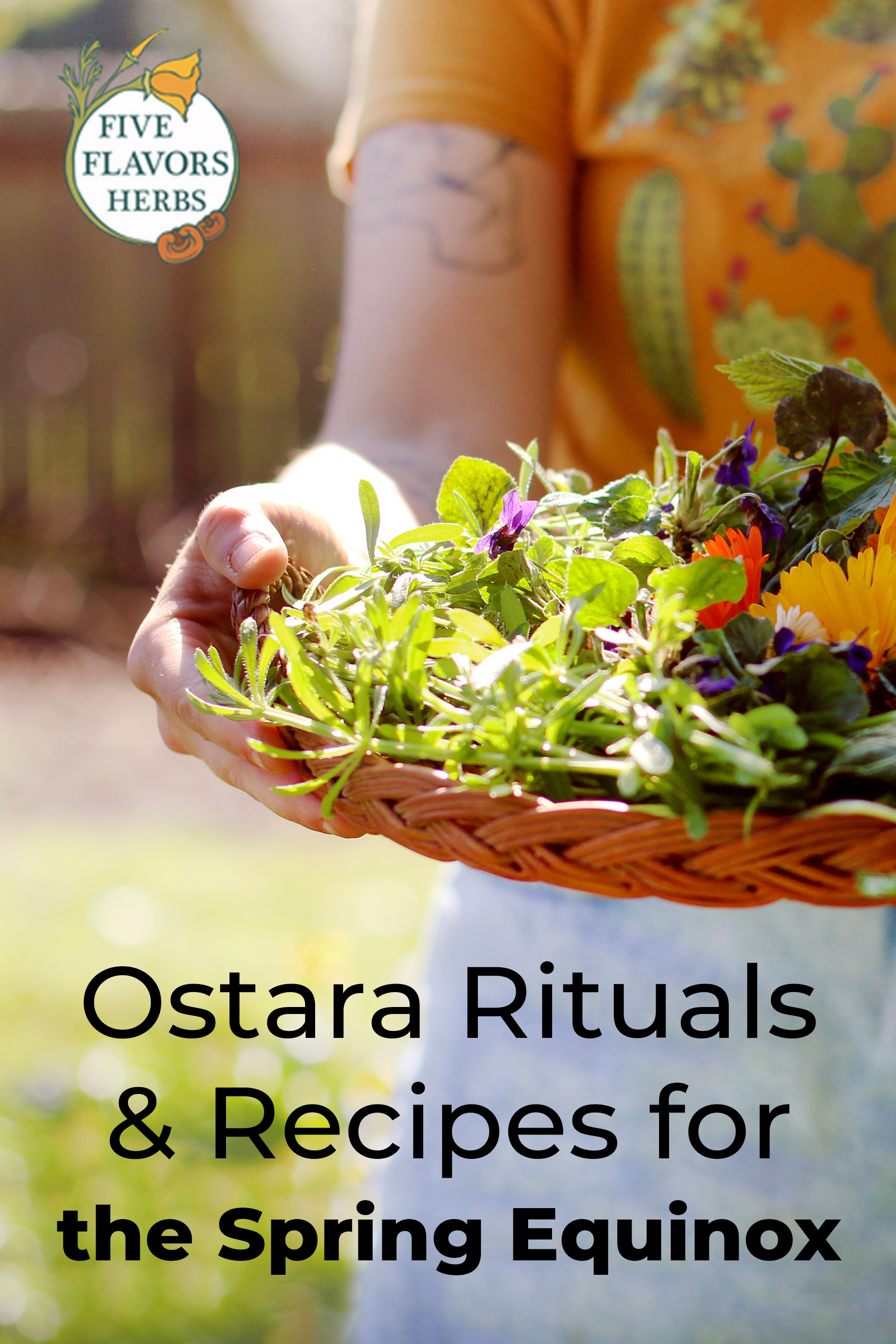 ostara-spring-equinox-herbs-and-rituals-pin-with-woman-holding-basket-of-fresh-flowers