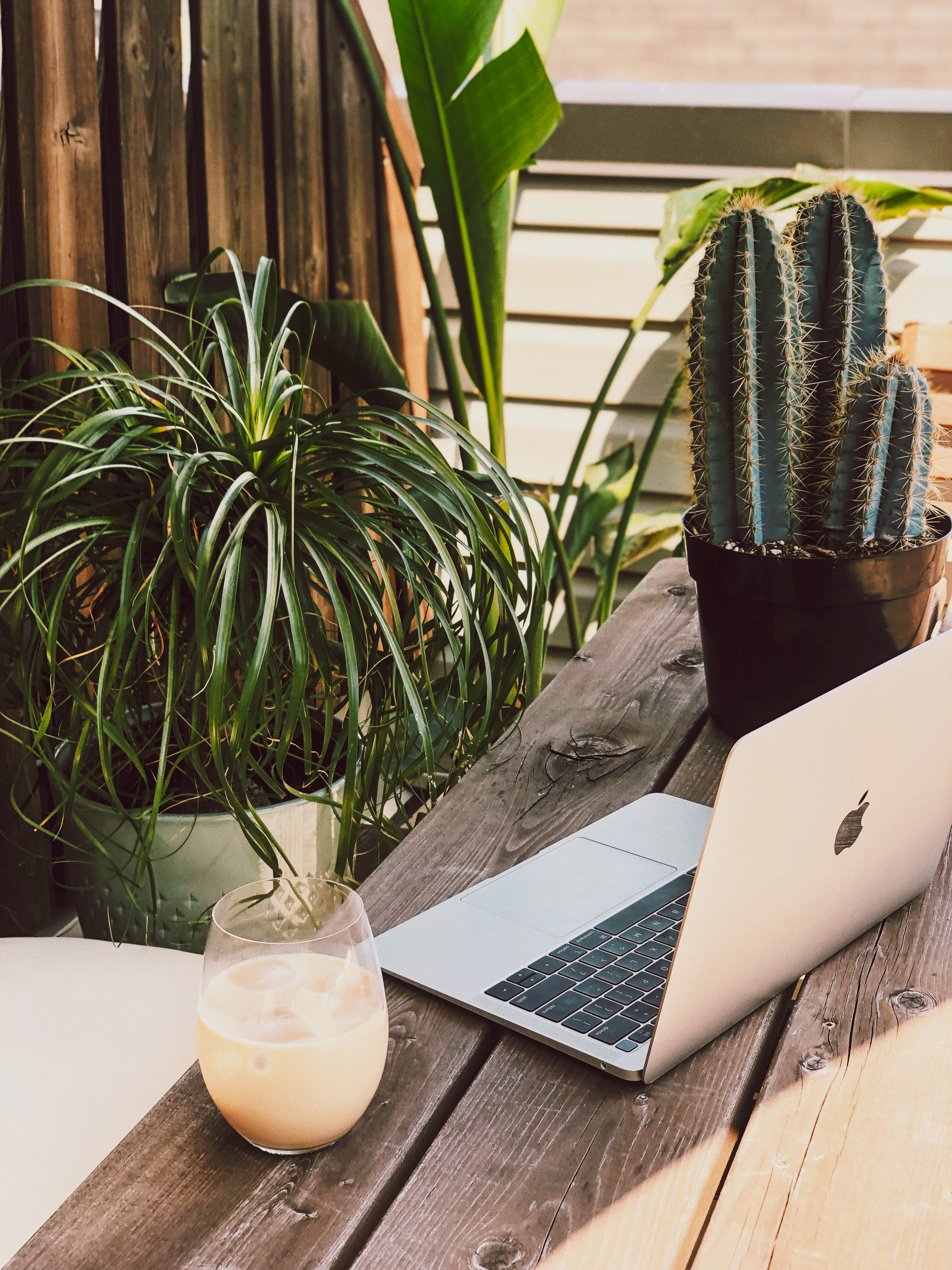 home-office-setup-with-laptop-on-table-surrounded-by-plants-and-cold-drink